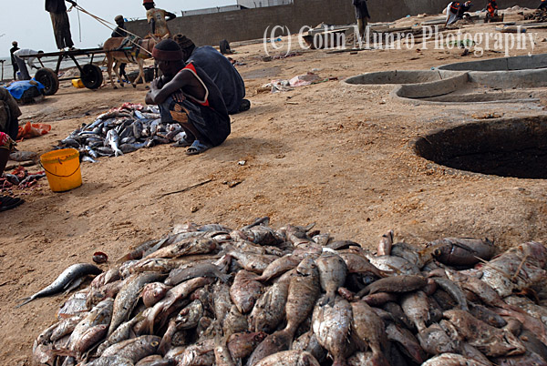 Fish salting pans, M'bour, Senegal. Image MBI000609.