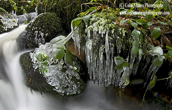 Icicles and ice formations around a fast flowing stream on the steep-sided Teign Valley, Dartmoor, Devon.  Available as a fine art print. Colin Munro Photography. www.colinmunrophotography.com