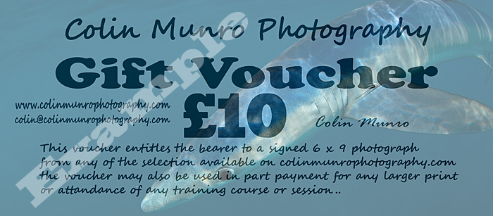 Ten Pound Gift Toen to spend on Colin Munro Photography Signed Prints, Courses or Training sessions.