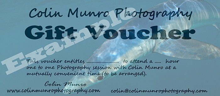 Example 2 hour photography Gift Token Colin Munro Photography