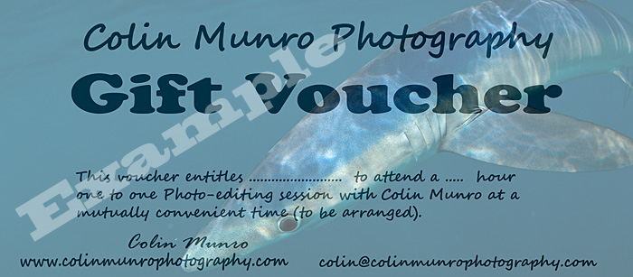 Colin Munro Photography Photoshop and photo-editing Gift Token