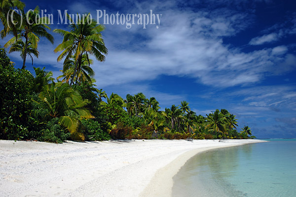 Coconut palms trees and white sand beach and blue sky, Tapuaetai island (one foot island), Aitutaki atoll, Cook Islands. Image MBI000906.