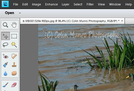 Image 7. Selecting text with the 'Move' tool