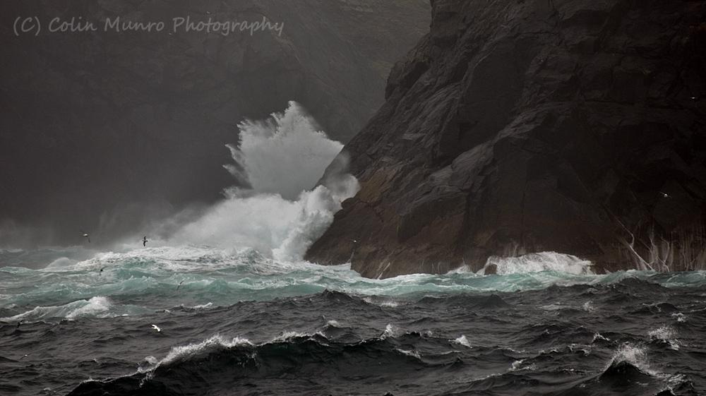 Fulmars and gannets over stormy seas, St Kilda, West Scotland. Colin Munro. www.colinmunroimages.com