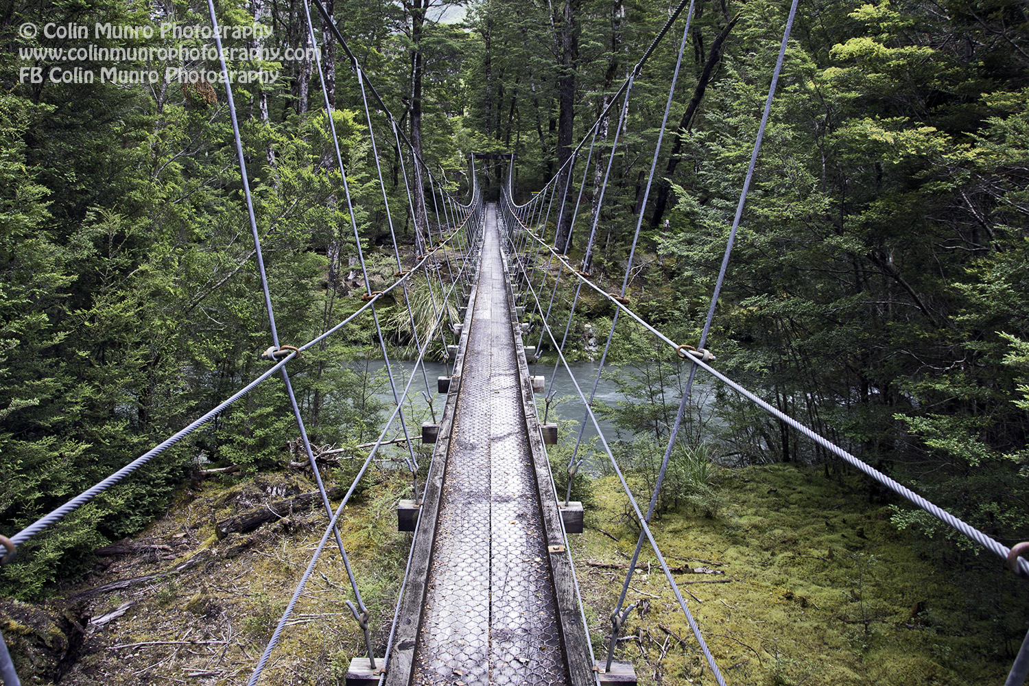 A couple of suspension bridge (swing bridge in NZ) must be crossed before the track enters Mount Aspiring National Park . Rees Dart Track, New Zealand. copyright Colin Munro Photography