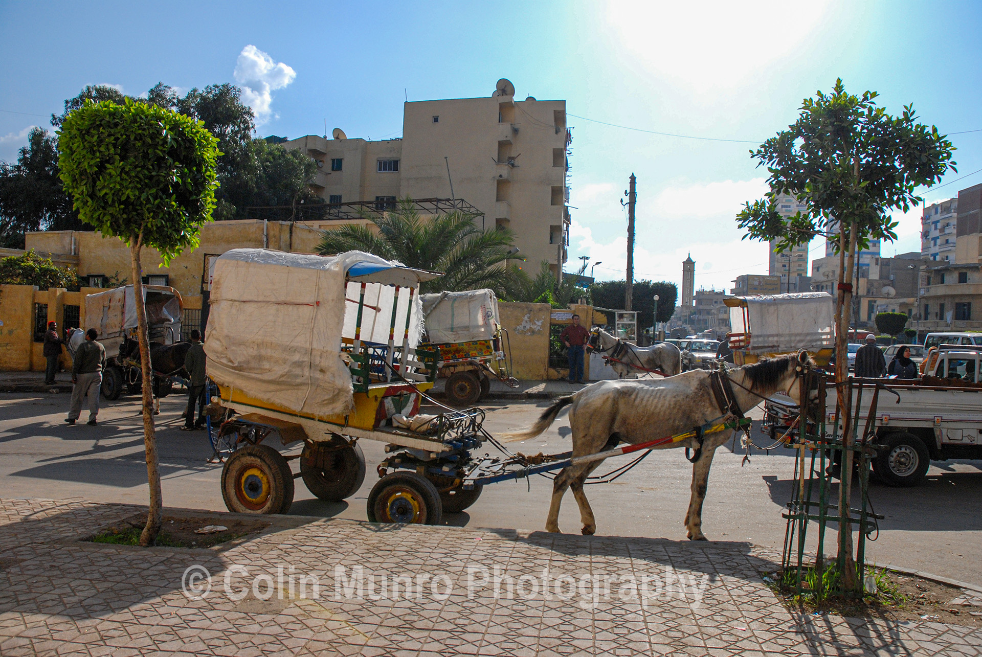 Horse drawn carriages, Abu Qir, near Alexandria, Egypt. www.colinmunrophotography.com
