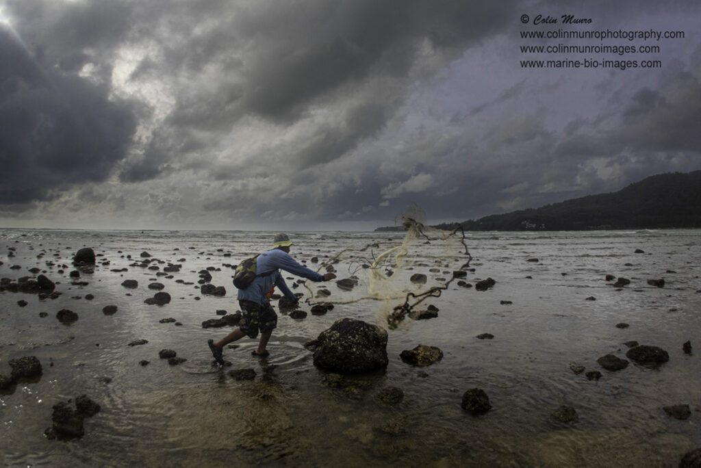 Travel Photography Tips.  A local fisherman throws his cast net to catch small fish at low tide. Phuket, Thailand. Colin Munro Photography